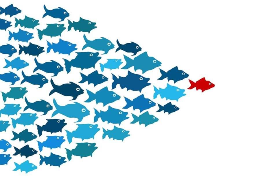 trovare clienti con linkedin