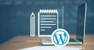 I Più Comuni Errori Wordpress - Come un Difetto Può Danneggiare la Visibilità.