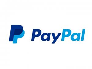 Le Alternative a PayPal - Come Potenziare il Proprio E-Commerce.