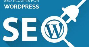 Opzioni SEO per WordPress - Perché Conviene Non Utilizzare Plugin.