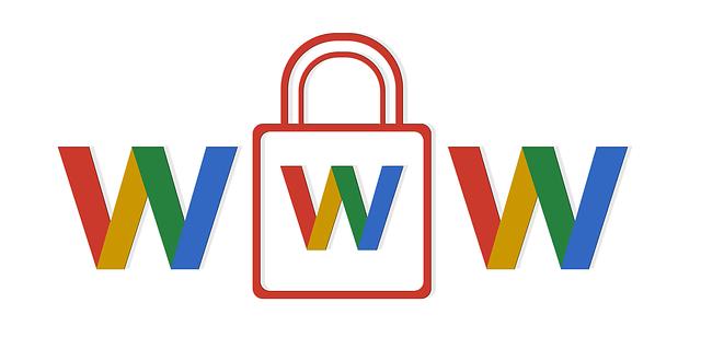 Www o Non www - I Pro e i Contro di un Sistema Antico.
